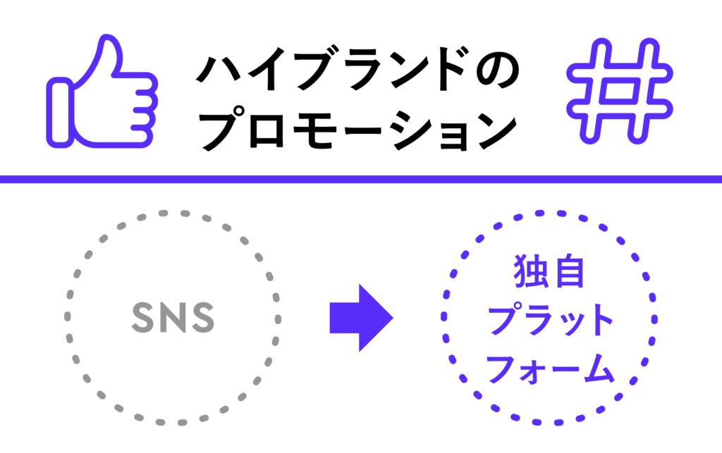 SNS→独自プラットフォーム